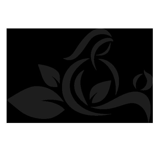 Logo Iris Lemke Naturheilpraxis